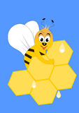 Bee. Cute bee on honeycomb on blue background Stock Images