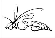 Bee. Wasp looks like a stil-life vector illustration