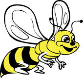 Bee Stock Photo