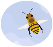 Bee. This bee was created in Adobe Illustrator and contains some clipping masks but there are no gradients, meshes, transparencies or compound paths Royalty Free Stock Image