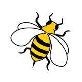 Bee. Vector illustration of a honey bee stock illustration