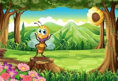 A bee above the stump and a tree with a beehive Stock Images