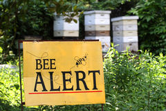 Bee Alert. A bee awareness sign in front of bee hives Royalty Free Stock Photo