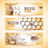 Bee Banner Sketch Stock Photo