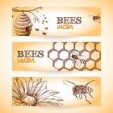 Bee banner sketch stock illustration