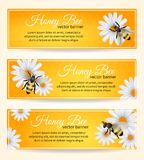 Bee banners set Royalty Free Stock Image