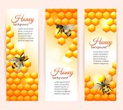 Bee banners vertical Stock Photography