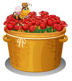 A bee at the basket full of red roses Royalty Free Stock Photos