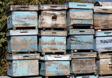 Bee Box Royalty Free Stock Images