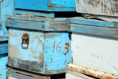 Bee Box Stock Images