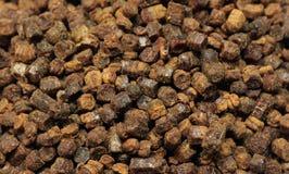 Beebread grains Stock Photo
