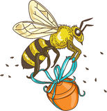 Bee Carrying Honey Pot Drawing. Drawing sketch style illustration of a worker honey bee carrying a honey pot with ribbon viewed from the side set on isolated Royalty Free Stock Images