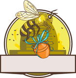 Bee Carrying Honey Pot Skep Circle Drawing. Drawing sketch style illustration of a worker honey bee carrying a honey pot with ribbon with skep in the background Royalty Free Stock Photography