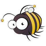 Bee cartoon. A cartoon or illustration of an artistic bumblebee Royalty Free Stock Photography
