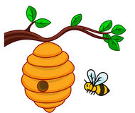 Bee cartoon Stock Photos