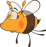 Bee. Cartoon. It is yellow a brown toy bee with the big eyes Stock Image