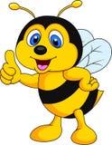 Bee cartoon thumb up. Illustration of bee cartoon thumb up Royalty Free Stock Photography