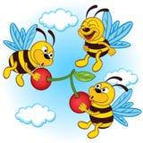 Bee and cherry Stock Photo