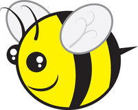 Bee Chubby. Chubby bee character flying isolated Stock Image