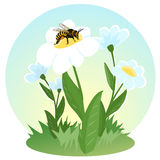 A bee collects nectar on the flowers. Life of flying insects. Beekeeping. Children's. Illustration. Vector Stock Images