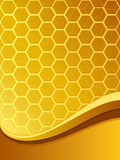 Bee comb background Stock Photography