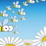Bee And Daisy. Spring Background. Royalty Free Stock Images