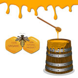 Bee eating honey Royalty Free Stock Photos
