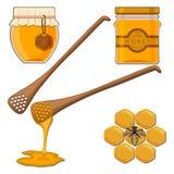 Bee eating honey Royalty Free Stock Photo