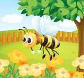 A bee in a fenced garden. Illustration of a bee in a fenced garden Royalty Free Stock Photos