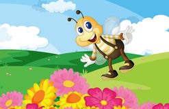 Bee in the field. Cute bee in a flower field Stock Images