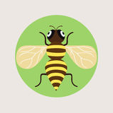 Bee flat design vector icon Stock Photography