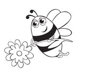 Bee with flower Stock Photography