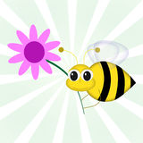 Bee and Flower. Graphic illustration of cartoon bee holding pink flower against green vortex background Stock Image