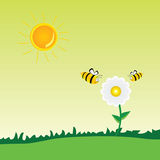 Bee with flower art vector illustration Royalty Free Stock Image