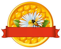 Bee and flower on honeycomb. Stock Photos