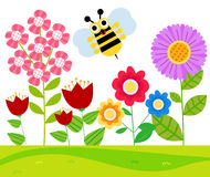 Bee and flower Stock Image