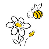 Bee and flower. Illustration isolated on white background Stock Illustration