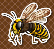 Bee flying on brown background Royalty Free Stock Photography