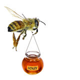 Bee. Flying with a honey glass isolated on a white background Royalty Free Stock Image