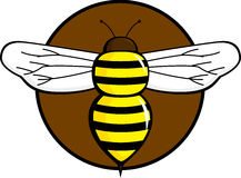 Bee flying insect. Illustration of a bee flying insect Royalty Free Stock Photography