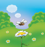 Bee flying. Over the flower chamomile. Spring single flower and bee, trees, herb and bush, grass, blue sky, spring landscape background. Colorful digital vector illustration