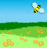 Bee flying over a green lawn. Vector illustration depicting a bee flying over a green lawn and flowers Stock Image