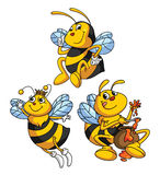 Bee Funny Cartoon Stock Images