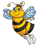 Bee Funny Cartoon Royalty Free Stock Photos