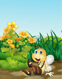 Bee in garden Stock Image