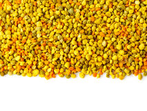 Bee gathered pollen granules Stock Images