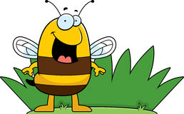 Bee Grass Stock Image