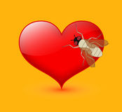 Bee on Heart Royalty Free Stock Photography