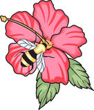 Bee On Hibiscus Royalty Free Stock Images