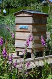 Bee hive. In sunny garden Royalty Free Stock Image